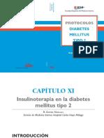insulinizacion