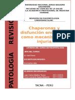 Modelo Monografias