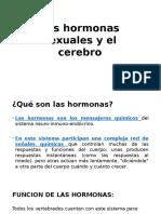 Las hormonas sexuales y el cerebro.pptx