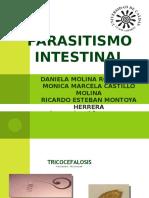 7. Parasitismo Intestinal