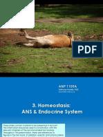 Lec 6 & 7 - Homeostasis-ANS & Endocrine 6&7 (1)