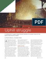 Fused Alumina Article