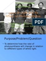 Types of Light and Its Affect on Photosynthesis