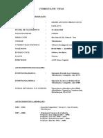 Curriculum Vitae Dario Bravo Soto 2 Actualizado Abril2015 -