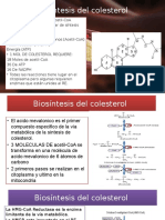Regulación de La Síntesis de Colesterol Copia