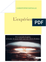 Christophe Bataille - L 39 Exp Rience