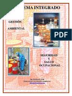 Manual Sistema Integrado de Gestion Ambiental-seguridad y Salud Ocupacional