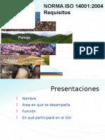14001 PRESENTACION 22-07-13.ppt