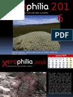 Xerophilia Calendar 2016 - 2