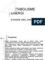 METABOLISME ENERGI1