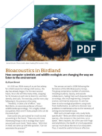Bioacoustics in Birdland