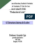 Le Estructura Interna de La Ubre