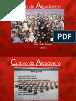 Slides de Algodao 2015-2 Parte I