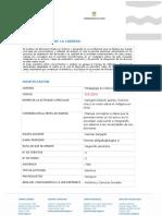 Programa de estudio electivo Nengüm 2015 al 7-IX-15.doc