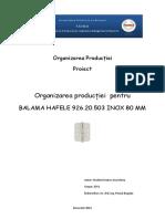 259489096 Proiect OP Stancu Ana Maria (2)