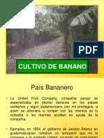 El_cultivo_de_banano_en_Guatemala_2009__66_p.pdf
