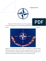 nato background guide