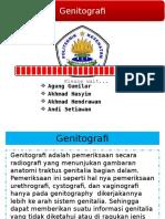 PEMERIKSAAN GENITOGRAFI