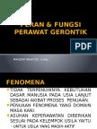 Peran & Fungsi Perawat Gerontik