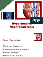 Hypertensive Nephrosclerosis