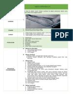 SOP Injeksi IV