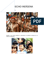 Derecho Indigena Parte Uno (1)