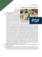 Formacion Agua Nueva SGM
