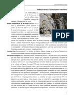 Chipoco.pdf