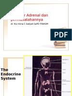 Kelainan Coreteks Adrenal