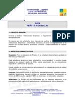 Practica.guia IV v-2010
