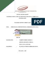 Ensayo de Programación Curricular Anual - Ejemplos de Los Componentes de La Planificación Curricular Annual
