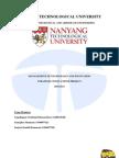 Report on TATA NANO