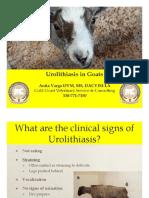 blocked goat urolithiasis handout