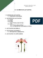 t3- El Reino de Las Plantas.