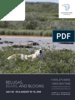 2016  Belugas, Bears, And Blooms