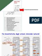 6.glucocorticoidi