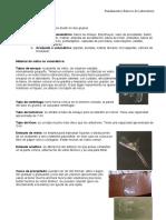 Material de Laboratorio (5)
