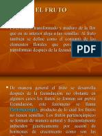 12. EL FRUTO