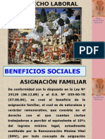 BENEFICIS SOCIALES