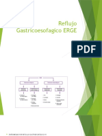 Reflujo Gastricoesofagico ERGE