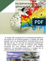 Psicologia de La Salud Interdisciplinariedad y Multidisciplinariedad en Salud Mental