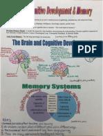 brainsummary2
