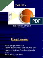 04b - Kornea-revisi