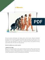 Proses Evolusi Manusia