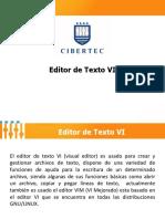 Editor de Texto VI