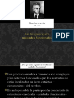 Presentacion LURIA