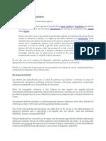 Contaminación Por Agroquímicos Informe