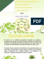 Ciclo Del Azufre(Presentacion) (1)