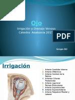 Ojo-Irrigacion y drenaje venoso (1).pptx