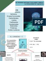Clase 4. Carbono y Biomoléculas